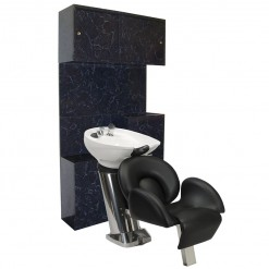 BBW 101 Backwash Shampoo Unit