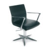 Aluotis Styling Chair