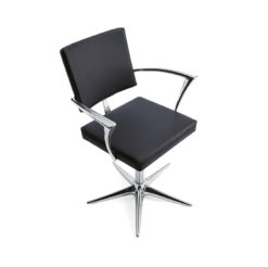 Oneida Styling Chair